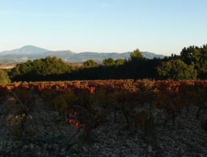 L'automne est une saison magnifique. Escapade dans le Vaucluse, autour de <a href=